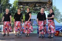 Główczycki Festiwal Lata 2018 - Dzień Drugi - 15 lipca 2018r.-41