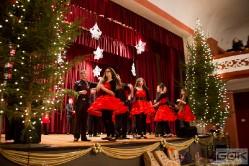 Wielka Orkiestra Świątecznej Pomocy - 11 stycznia 2015 r.-36